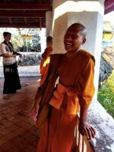 bee monk lp